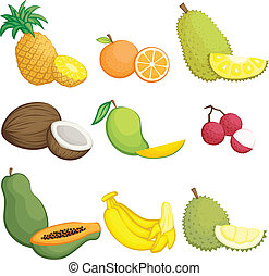 Tropical fruits icons - A vector illustration of tropical ...