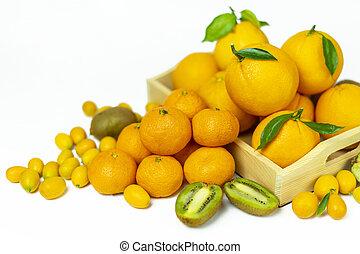 Tropical fruits in bulk: orange, mandarin, kumquat, kiwi. Fresh fruits, food on a white background.