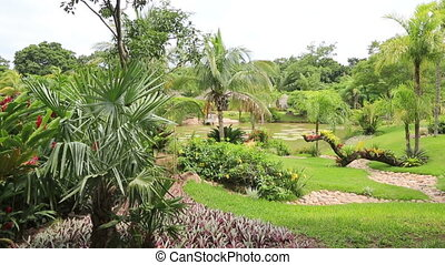 Tropical garden in Bolivia - Beautiful tropical garden in...