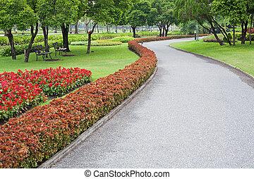 Tropical garden in summer