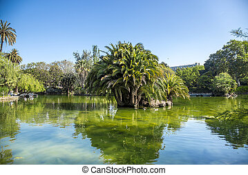 Tropical garden, lake and palm tree in Barcelona, Spain.