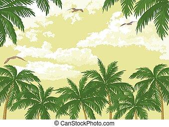 tropical, gaviotas, palmas, cielo, paisaje