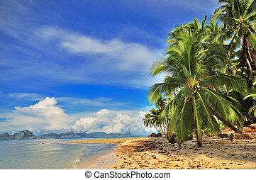 Tropical Getaway - Beach Tropical Exotic Getaway Paradise