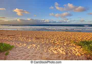 Tropical gold sand beach. Oneloa Beach, Maui, Hawaii