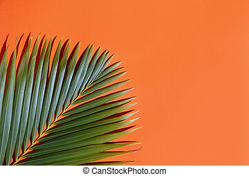 Tropical green palm tree leaf on a bright summer orange background , top view with copy space