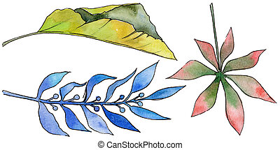 Tropical Hawaii leaves in a watercolor style isolated.