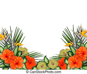 Image and illustration Composition for Card, luau invitation, stationery, page, background or border of Tropical flowers with copy space