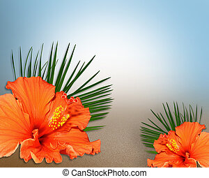 Image and illustration composition of tropical flowers for invitation, border or corner design with copy space