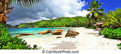 tropical holidays in Seychelles. - Beautiful Takamaka Beach ...