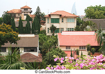 Residential homes, in the tropics
