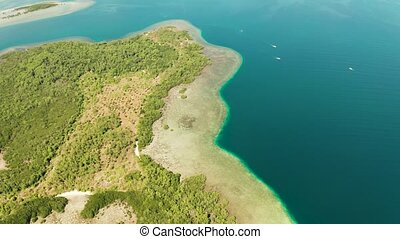 Tropical island and coral reef, Philippines, Palawan