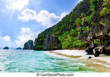 Tropical Island beach. - Idilic paradise beach with tropical...