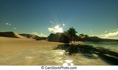 Tropical island, couple on holiday