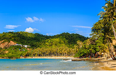 Tropical island landscape with beach and palms, Ipil beach, Palawan, Philippines