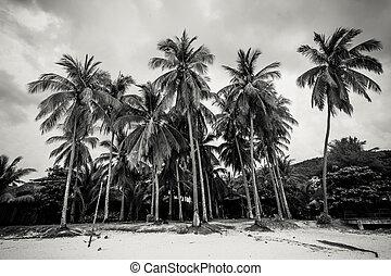 Tropical island of coconut trees, retro style