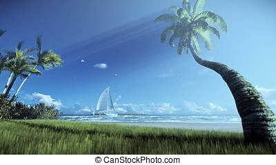Tropical island, palm trees and yacht sailing, woman running...