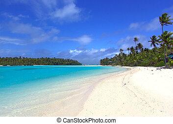 Tropical - Lagoon, Sand and Palms