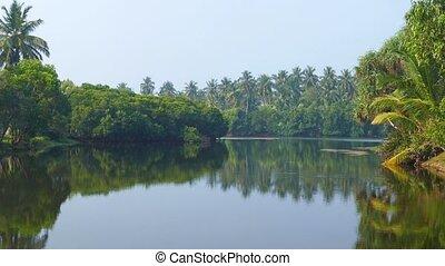 tropical lake in Sri Lanka