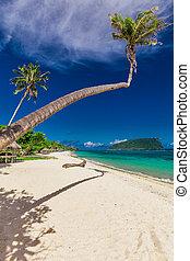 Tropical Lalomanu beach on Samoa Island with coconut palm trees and fales