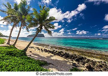 Tropical Lalomanu beach on Samoa Island with coconut palm trees