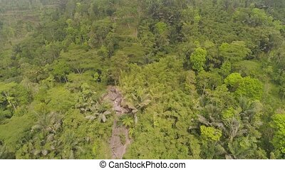 tropical landscape rainforest and mountains - aerial view...