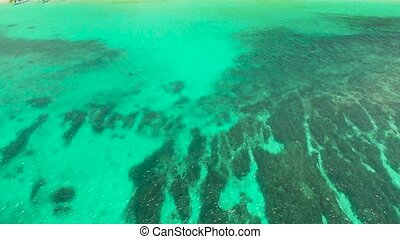 Blue background with transparent sea water copy space for text. Sea water surface in lagoon and coral reef. Top view transparent turquoise ocean water surface. background texture