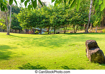 Tropical landscape with green lawn, trees and house at sunny day