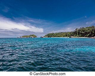 tropical landskab