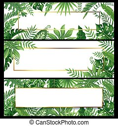 Tropical leaves banners. Exotic palm leaf banner, natural coconut palms branch frames and jungle plants vector background design set