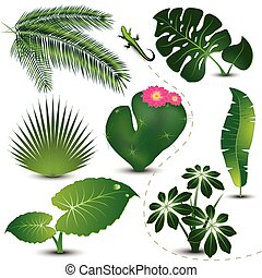 Vector illustration representing set of tropical leaves isolated on white, with little curious lizard among them.