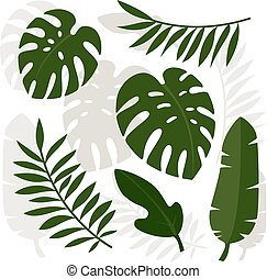 Tropical leaves. Vector illustration.