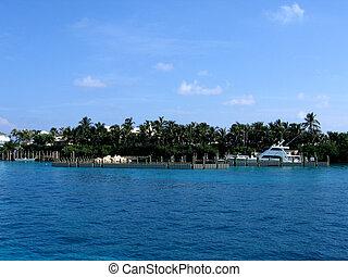 Tropical marina