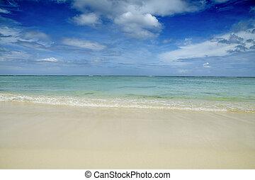 tropical, mauritian, playa