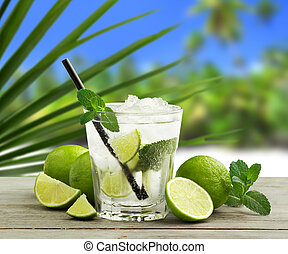 tropical mojito - mojito cocktail and fresh ingredients in a...