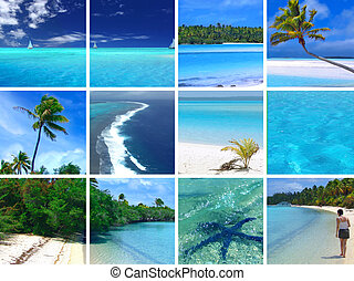 Tropical Montage - Tropical Scenes