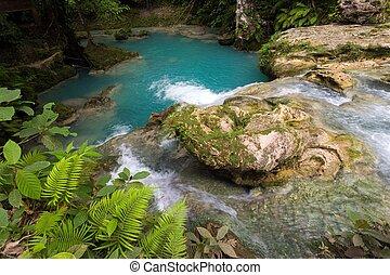 tropical natural pool