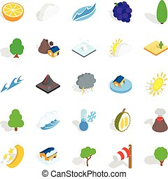 Tropical nature icons set, isometric style