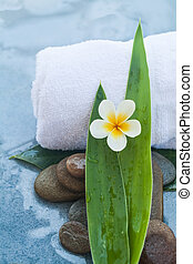 Tropical objects and whitel towel for Spa massage treatment on blue table background.