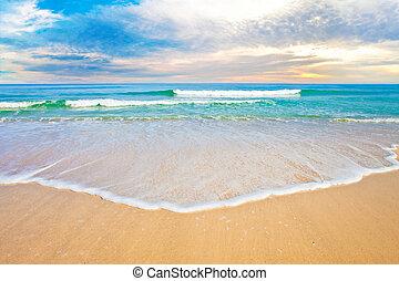 tropical, océano, playa, salida del sol, o, ocaso