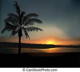 tropical, ocaso, 2