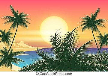 tropical, ocaso, paisaje