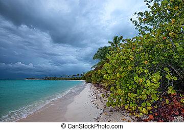 Tropical ocean coastline in nasty weather - Beach on...