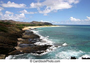 Tropical ocean shore