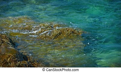 Tropical Ocean Water Lapping Gently at a Barnacle-Encrusted...