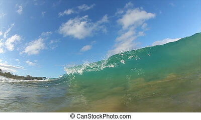 Tropical Ocean Wave