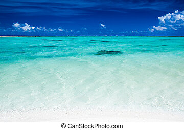 Tropical ocean with blue sky and vibrant ocean colors with coral