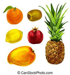 tropical, orgánico, colección, fruits