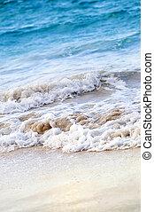 tropical, orilla, romper ondas