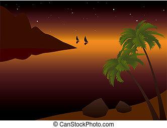 tropical palm beach at sunset