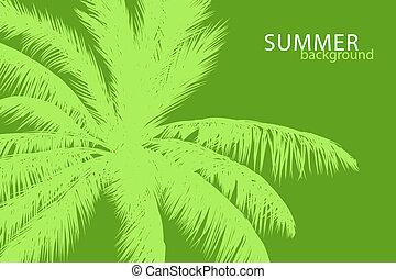 tropical palm